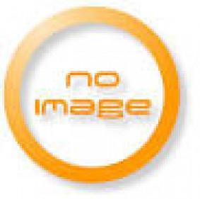 BLACK STEEL DOOR PRESSURE VALVES A105 # 800...